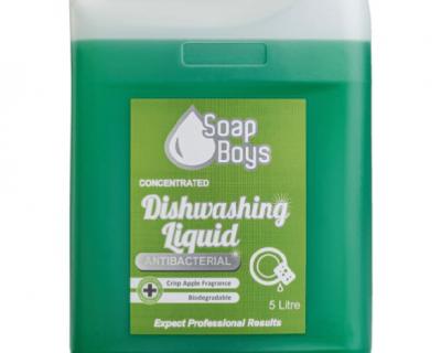 Dishwashing Liquid Antibacterial 5L-50500